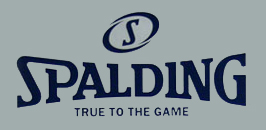 Spalding - True To The Game